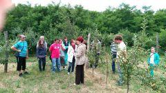Otvorene škole organske poljoprivrede u Banatu i Sremu