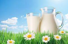 Organsko mleko i mlečni proizvodi