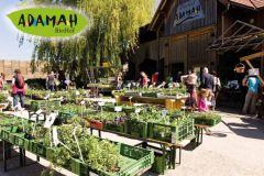 Studijsko putovanje u Beč u okviru Organic bridge projekta